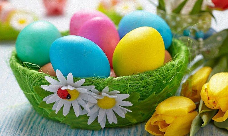 Пасхальные яйца. Удивительные идеи для Пасхальных Яиц