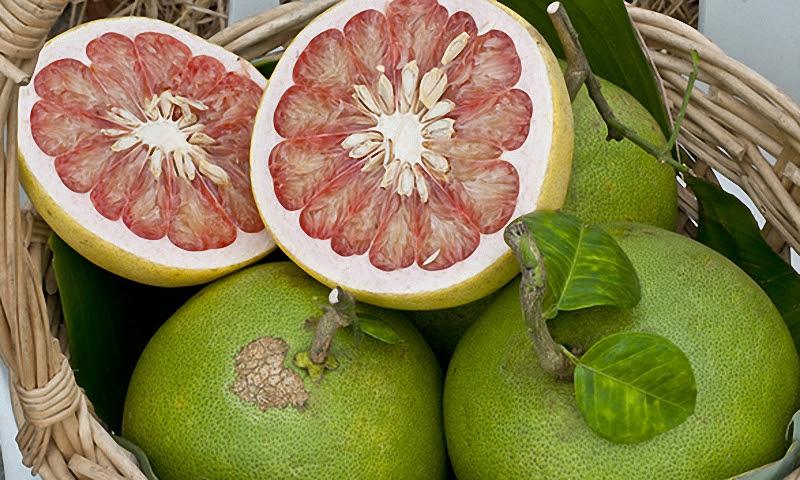 Помело фрукт, полезные свойства