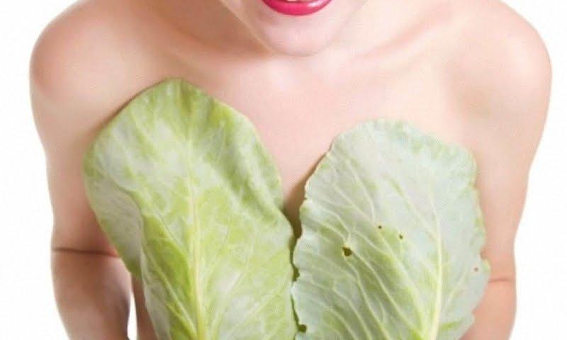 Капустный лист при лактостазе, мастопатии и других проблемах груди