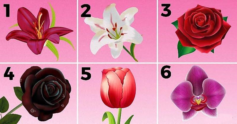 Выберите самый прекрасный цветок и узнайте секрет вашей личности