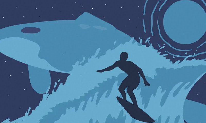 Волна, кит, солнце, серфер